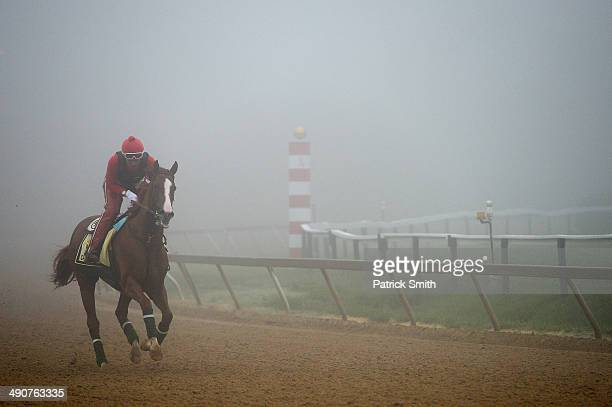 Exercise rider Willie Delgado takes Kentucky Derby winner California Chrome over the track in preparation for the 139th Preakness Stakes at Pimlico...
