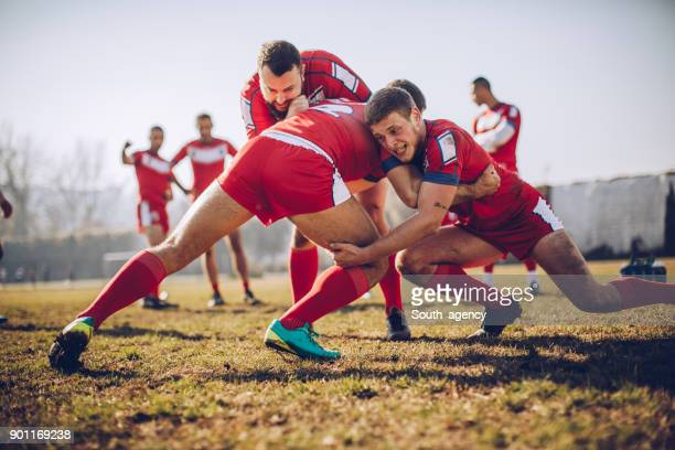 exercises before game - rugby stock pictures, royalty-free photos & images
