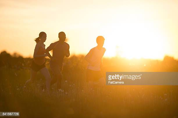exercising at dusk - 5000 meter stock pictures, royalty-free photos & images