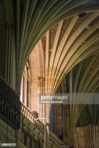 Exeter Cathedral Nave vaulted ceiling detail
