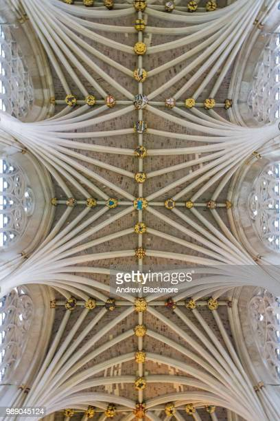 Exeter Cathedral Nave vaulted ceiling