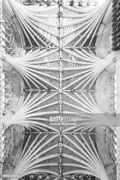 Exeter Cathedral Nave vaulted ceiling (b&w)