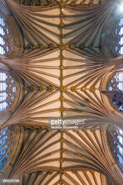 Exeter Cathedral Quire vaulted ceiling