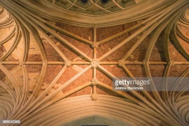 Exeter Cathedral South Nave vaulted ceiling (detail)