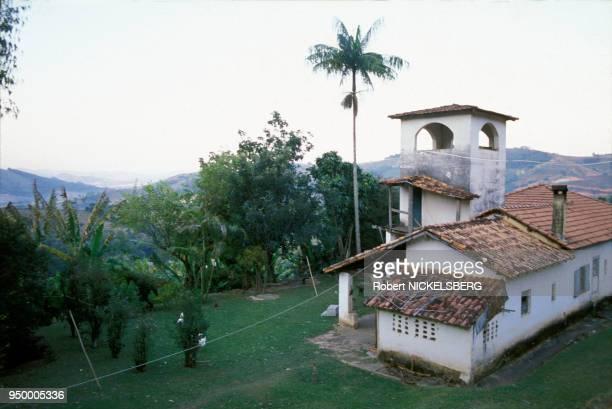 Exhumation du corps supposé du médecin nazi Josef Mengele, pour identification, le 6 juin 1985 au Brésil.