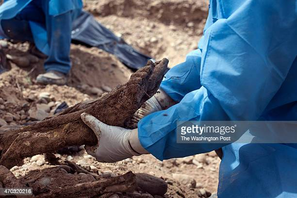 Exhumation of mass grave site inside the presidential palace compound which contains the housing of former Iraqi President Saddam Hussein in Tikrit...