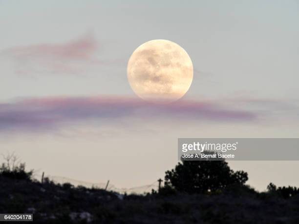 Exit of the full moon over the silhouette of a mountain with a sky with clouds of purple color
