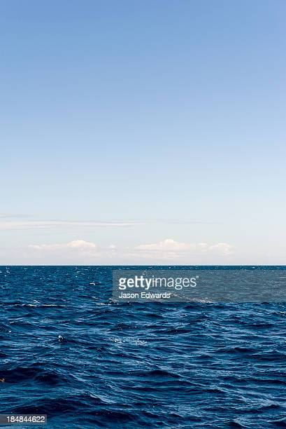 A calm ocean surface stretching all the way to the horizon.