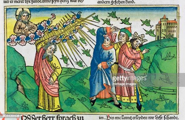 120 the plague of the locusts one of The Seven Plagues of Egypt Facsimile copy of a 15th century manuscript of the German School Artist Unknown