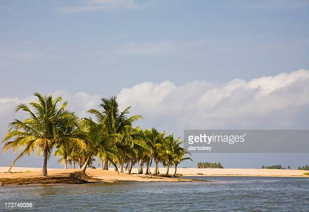 Exotic beach at the mouth of the Volta River Delta in Ghana