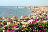 Exotic beach with parasols and bougainvillea , Sharm el-Sheikh, Egypt