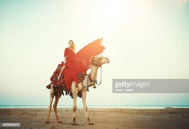 exotic camel ride - camel active stock-fotos und bilder