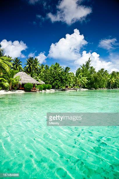 lusso esotico resort turistico - isole cook foto e immagini stock