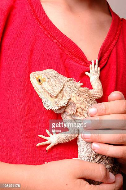Exotic Pet Lizard Climbing Boy's Shirt
