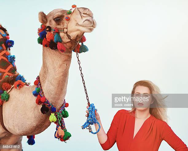 exotic tourist near camel - tassel stock pictures, royalty-free photos & images