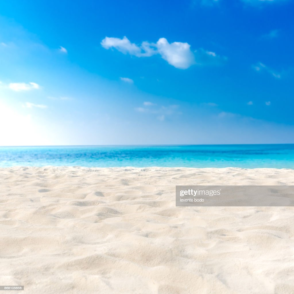 Exotic Tropical Beach Landscape For Background Or Wallpaper Design