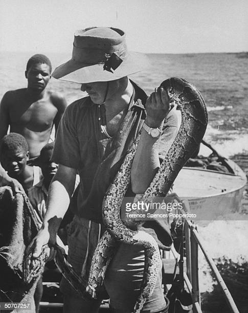 Expedition leader Rupert Fothergill holding python snake rescued from rising waters of the Kariba dam