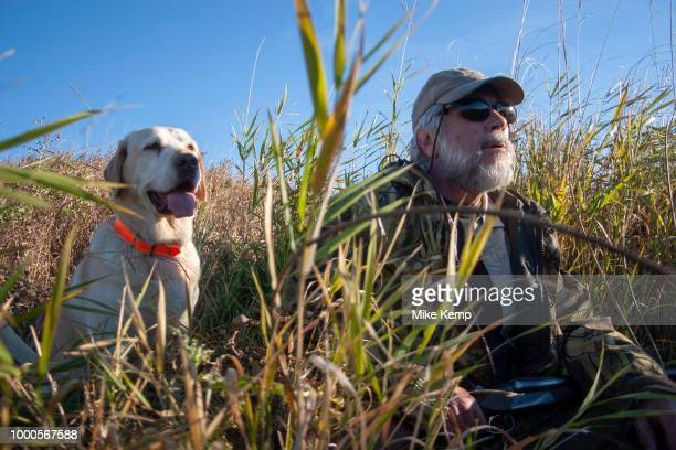 Experienced hunter John Davidson duck hunting with his faithful labrador retriever Chester near Minot North Dakota United States They wait patiently...