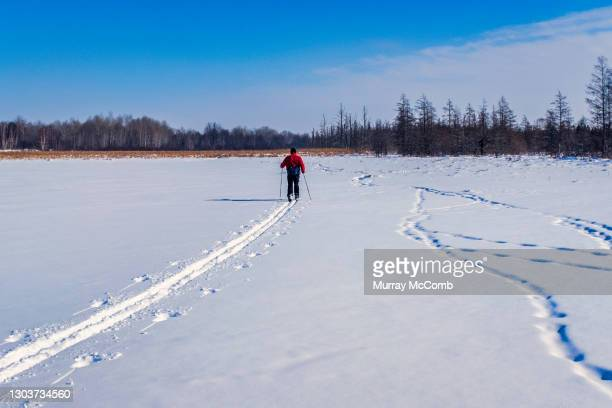 expert senior skier leading the way - murray mccomb stock pictures, royalty-free photos & images