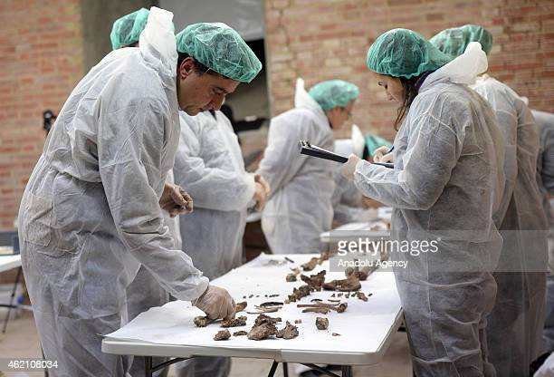 Experts analyse bones to find the remains of the 17th Century author Miguel de Cervantes at the Convent of the Barefoot Trinitarians in Madrid Spain...