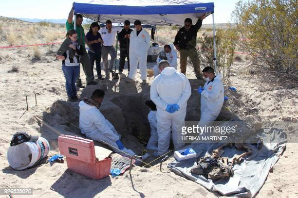 Experts from the Chihuahua state Prosecutor's Office work in a clandestine grave where the remains of two people were found in the desert of the...