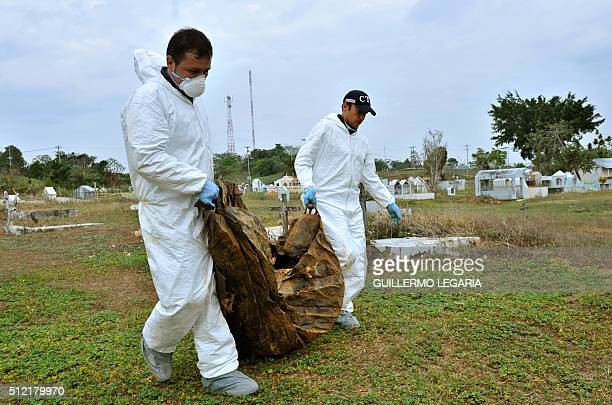 Experts from the Technical Investigation Unit of the Colombian General Attorney's Office walk through the cemetery during the exhumation of...