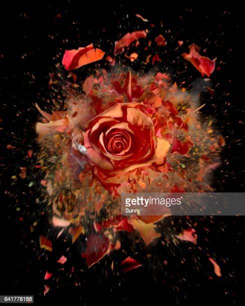 Exploding flowers
