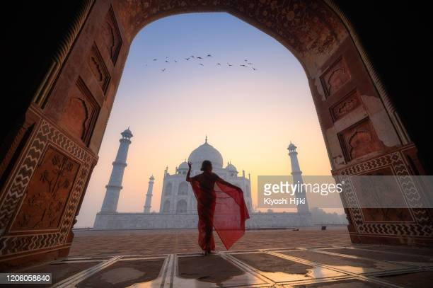 explore india - taj mahal stock pictures, royalty-free photos & images