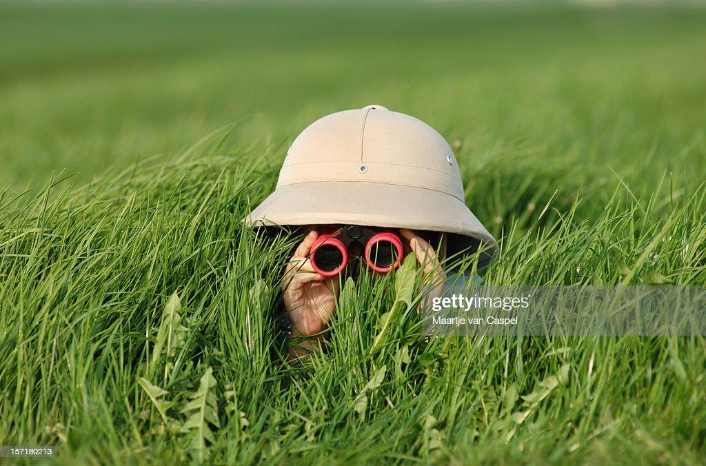 Explorer in the Field : Stock Photo