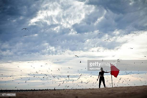 Explorer under stormy skies circled by birds