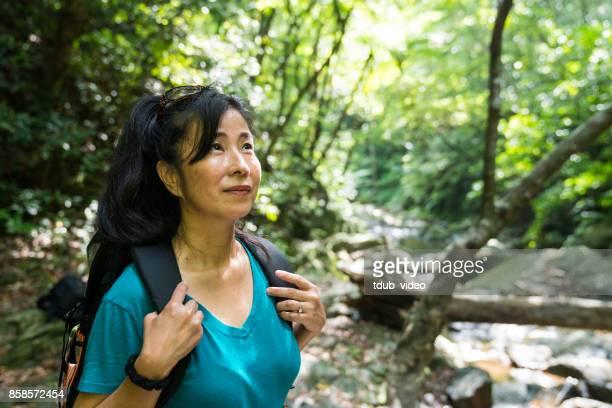 沖縄の森を探索