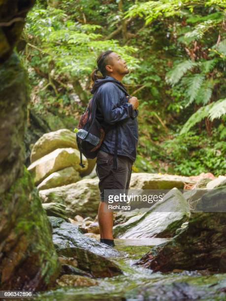 Exploring a Tropical Rainforest in Okinawa Japan