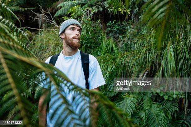 exploring backpacker - solo un uomo foto e immagini stock