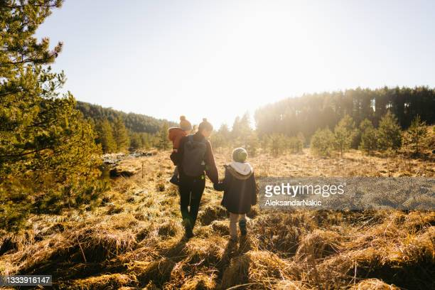 exploring beautiful outdoors together - nature reserve stock pictures, royalty-free photos & images