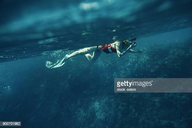 exploring the beautiful sea life