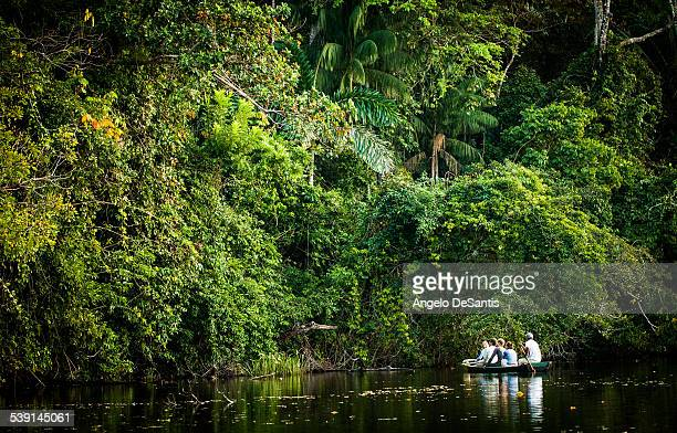 Exploring the Bolivian rainforest by boat