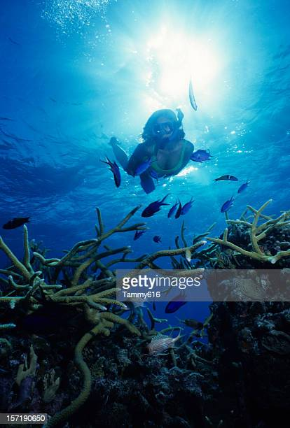 Explorar la profunda