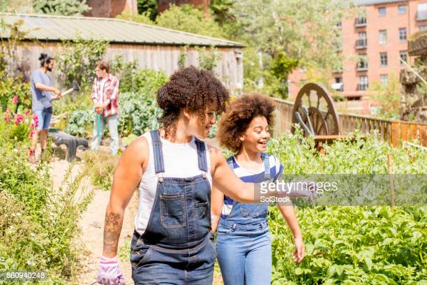 exploring the farm - local girls stock photos and pictures