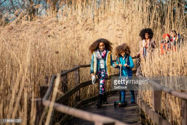 exploring the parkland - mixed race person stock pictures, royalty-free photos & images