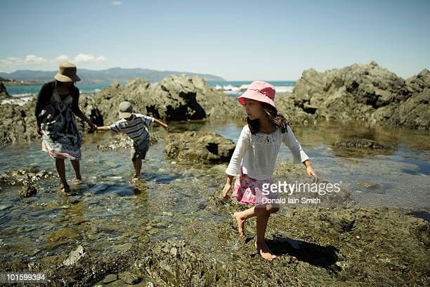 exploring the rock pools - tidvattensbassäng bildbanksfoton och bilder