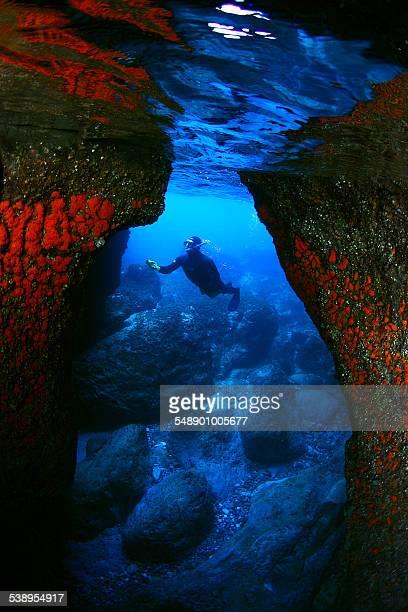 Exploring the seafloor