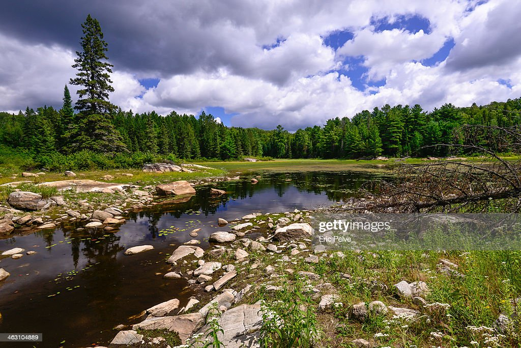Exploring wilderness on a canadian trail : Stock Photo