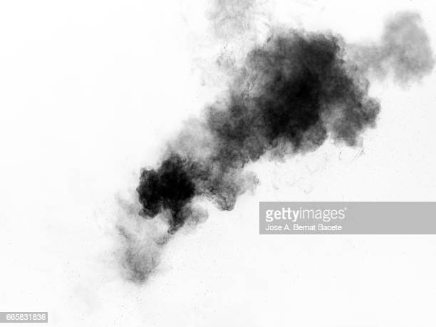 Explosion of a cloud of powder of particles of  colors gray and black on a white background