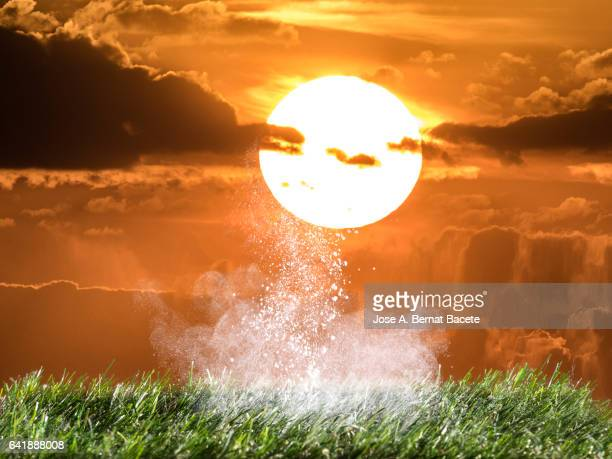 Explosion of dust particles by the impact of the sun on the earth on a grassy surface