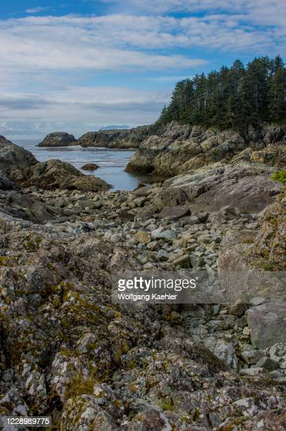 Exposed rocks at low tide in on George Island, off Chichagof Island, Tongass National Forest, Alaska, USA.