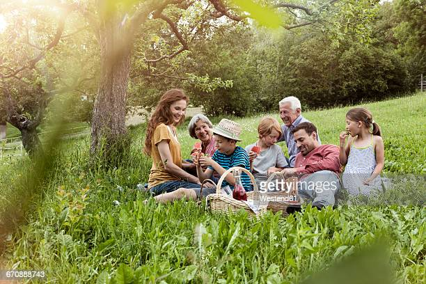extended family having a picnic in meadow - picknick stock-fotos und bilder