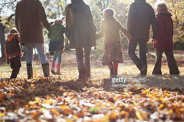 Extended family holding hands and walking outdoors
