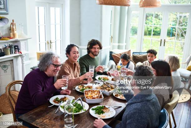 extended family toasting drinks at lunch - photography stock pictures, royalty-free photos & images
