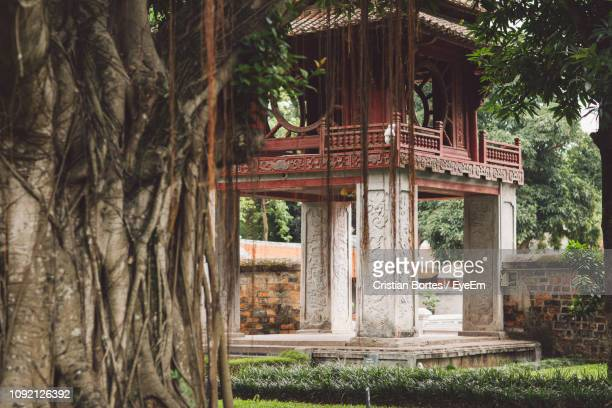 exterior of historic building - bortes stock pictures, royalty-free photos & images