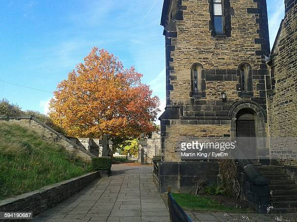 exterior of museum by autumn tree against sky - history museum stock pictures, royalty-free photos & images
